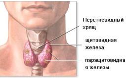 Лечение рака щитовидной железы: выбор современных подходов после постановки диагноза