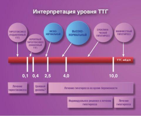 Шкала заболеваний при различных уровнях ТТГ