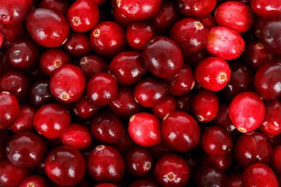 Клюква — кладезь витаминов