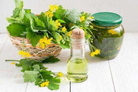Для создания рецептов против дистрофии кости можно применять как свежие растения, так и приготовленные из них снадобья.