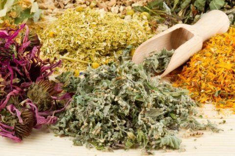 Многие травы обладают противомикробным эффектом.