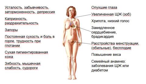 Десять признаков эндокринной патологии