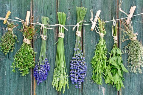 Эффективны отвары и настойки, приготовленные из лекарственных трав