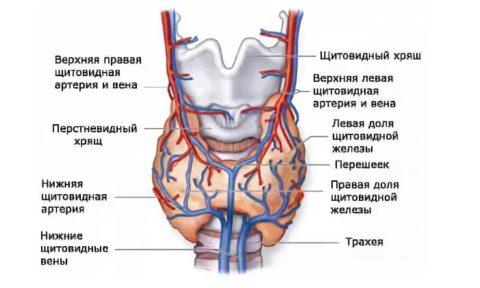 Латентная форма
